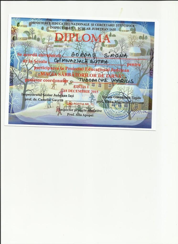 BORDAS SIMONA - Magia sarbatorilor