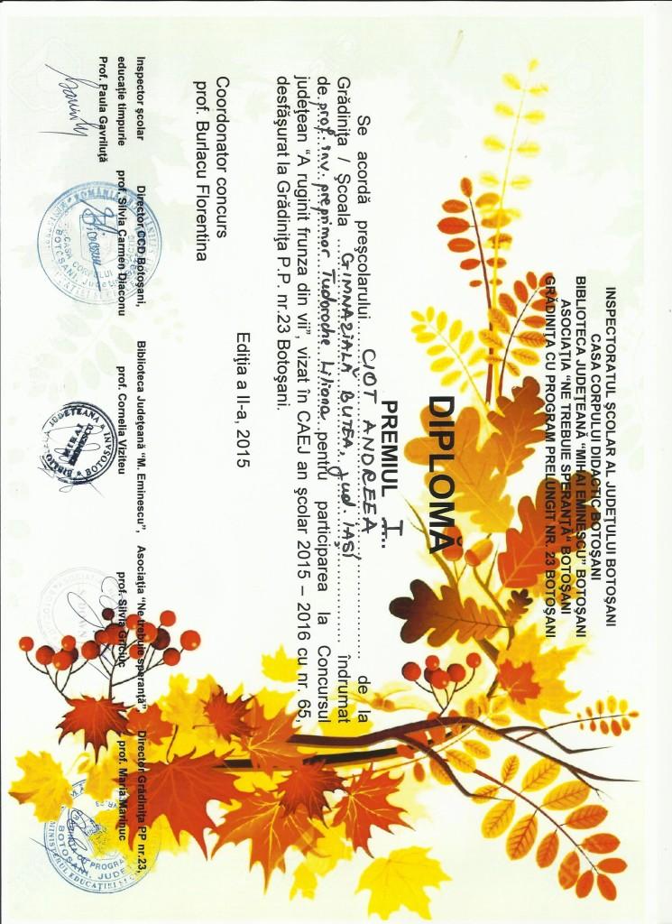 CIOT ANDREEA - A ruginit frunza din vii