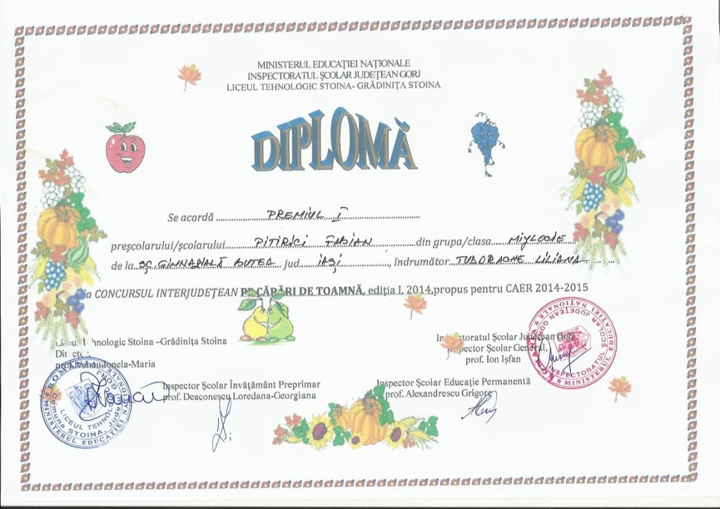 diploma Pe carari de toamna PITIRICI FABIAN
