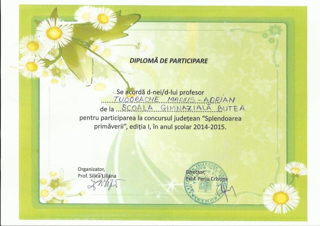 diploma participare concurs Splendoarea primaverii