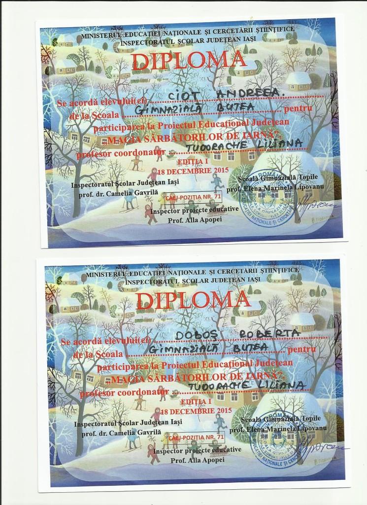 diplome participare Magia Sarbatorilor de iarna